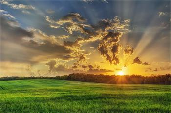 Солнечный проблеск / Закат после дождя / 8 мая 2018 г.