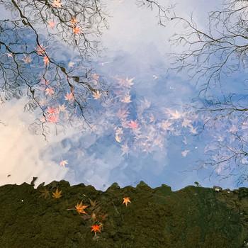 Момиджи / 水底の岩に落ちつく木の葉哉  (Листья потонули. Там они, на самом дне, устилают камни.  //Дзёсо Найто перевод В. Маркова)