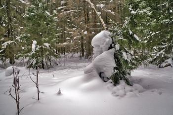 СНЕЖНЫЕ ЗАНОСЫ В ЛЕСУ / Снежные зарисовки в лесу