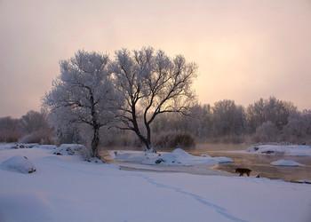 Рассвет реки Бог. / Зимний пейзаж на Реке Южный буг. С. Мигея . Украина.