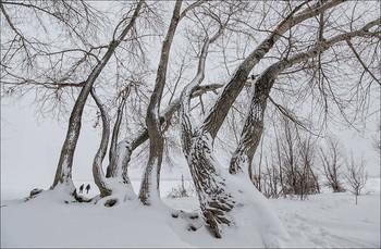 Много снега бывает / ...