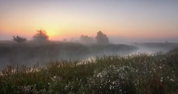 Утро одного дня / По волнам памяти