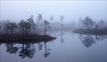 Сонное царство / балтика