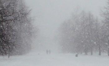 За снежной пеленой! / Прогулка в снегопад-парк