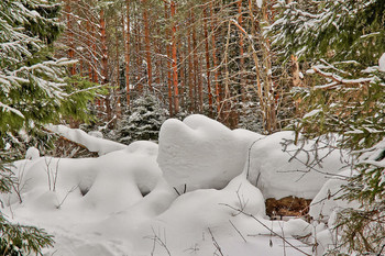 Снежные заносы в лесу. / Зима 2019.Г Снято 15.фераля. снежные сугробы в лесу.