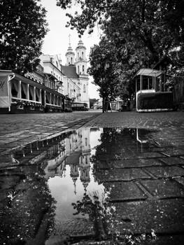 После дождя / Фото на Huawei Mate 7