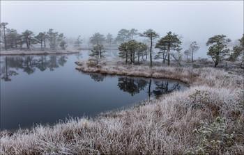 Без названия / Сегодня опять идет снег. Зима не сдается!