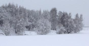 Кружево зимы! / Парк Строгино