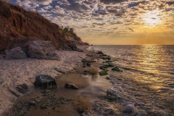 Берег утренний, азовский... / Азовское побережье близ Урзуфа  http://www.youtube.com/watch?v=4ND7SICQx0I