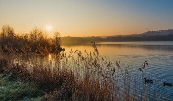 Безмятежная пятница / Утиное озеро.