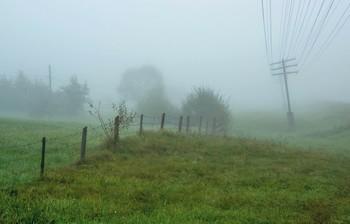 Меланхоличное утро / Из прогулок по Закарпатью