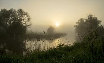 Утро / туман