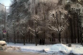 Мороз / Туман
