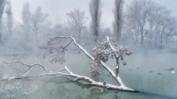 Утро / Зимнее утро