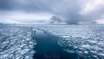 За бортом - Арктика / Путешествие на ледоколе по 80-й параллели