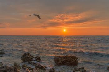 Море волнуется раз... / Крым, дикий пляж Севастополя