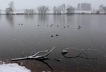 Начало зимы! / В парке -Строгино