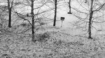 Прошла еще одна зима... / Прошла еще одна зима... А сколько их еще осталось? Подбитой птицею душа В чужую даль уже собралась. И не жалея ни о чем, Кружа над снежным пепелищем, Без криков, стонов, горьких слез Все что-то ищет, ищет, ищет... Возможно холод теплоты Последней уходящей мысли, Иль начертания судьбы В уже другой и новой жизни.