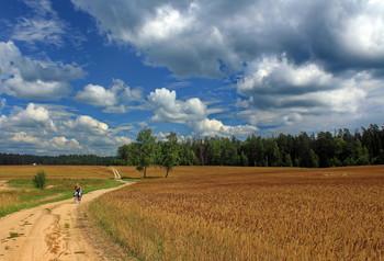 По дороге полевой - среди колосьев спелой ржи / По дороге полевой - среди колосьев спелой ржи