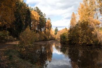 Осень, красивая и таинственная / Красноярский край г.Железногорск