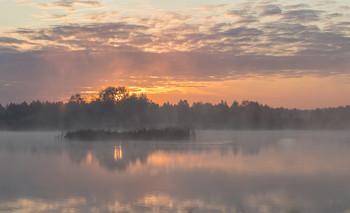 Туманное утро / ***