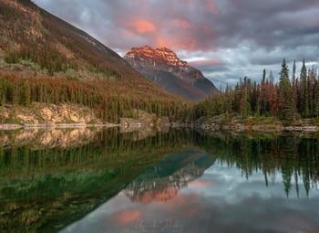 В вечерней тишине / Озеро Подкова, Национальные парк Джаспер, Канада