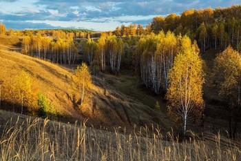 Октябрь во всей своей красе / окрестности п.Новочувашский,Татарстан