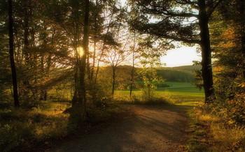 Осенним вечером / Осенний пейзаж .