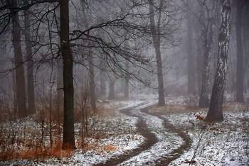 Дорога в туман / ...