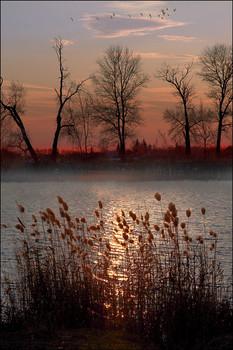 """Осенний вечер в """"Тополях"""" / Тёплый вечер. На закате..."""