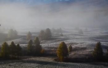 Туманное утро / ...