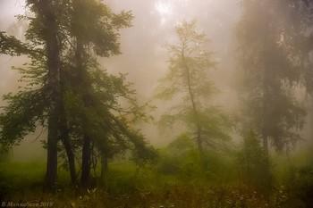 Утро туманное,утро седое... / ...