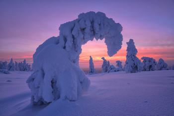 Зима однако... / Финляндия 2019 В январе 2020 еду в Финляндию на Рождество В феврале 2020 Кандалакша.  Свободно по одному месту. Подробности туров на сайте