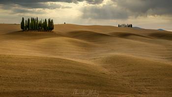 Тосканские холмы / Тоскана, Италия