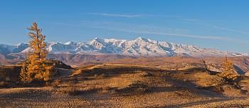 Вид на Северо-Чуйский хребет / ***