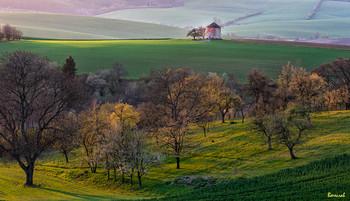 Старая мельница / поля Моравии