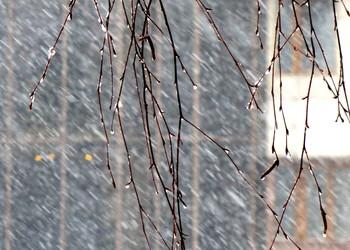 Снегопад / Зима-снег