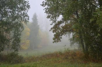 Утренний туман / ...