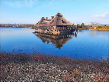 """Осень зиму красит / На берегу самой большой протоки яхт-клуба """"Січ"""". Справа на горизонте виден Днепр. 2 февраля, +11 гадусов. Такие сюрпризы преподнесла зима 2020 года."""