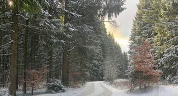 Когда приходит снег и солнце / Успел до обеда пролежать снег, пришлось быстро на горку сбегать :)