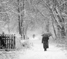 необычная прогулка(зимний вариант) / я шпионил за ней метров 500, пока местечко симпатичное не подвернулось:) с Наступающим Вас Новым Годом