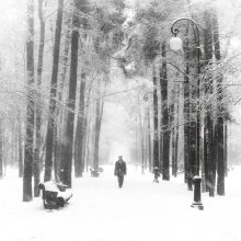 Snow / *********