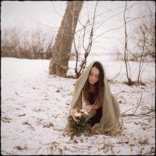 @}->-- / Там где она расцветает, Там никто не солжет, Там никто никогда не солжет. Лишь звезды небесные знают, Где она расцветет, Где однажды она расцветет.