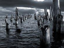 Они стоят, готовые к атаке... / Карелия, Онежское озеро