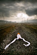 Утро на Земле / Анастасия Карандашова: фотограф