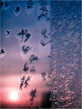 У скалы райских птиц / Эта - №3