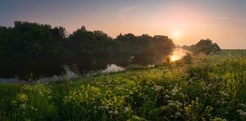 Летним утром на Упе / Тульская область, д. Орлово