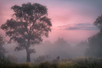 Летнее утро фотографа / Долина Истры