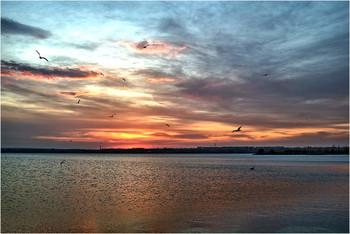 Апрельское утро / 14 апреля 2020 г. Снято с правого берега Днепра.