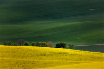 Весна придёт... / Южно-Моравский этюд.
